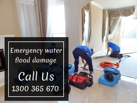 Carpet Water Damage Restoration Marks Point