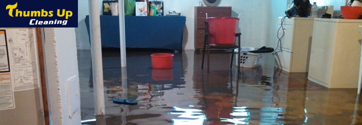 Carpet Flood Water Damage Restorations Eraring