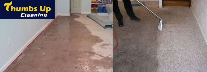 Carpet Water Damage Restoration Round Corner