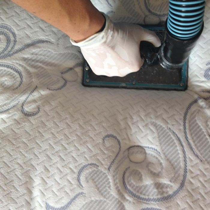 Expert Mattress Cleaning Mullion