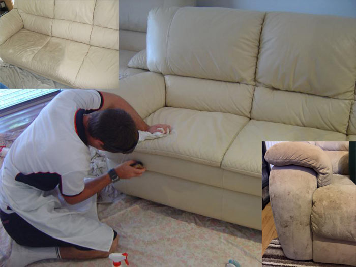 Expert Upholstery Cleaning Collector