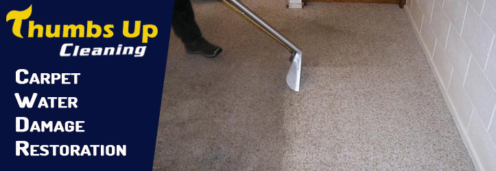 Importance of The Carpet Water Damage Restoration
